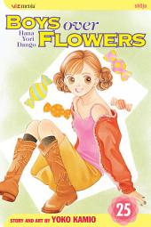 Boys Over Flowers: Volume 25