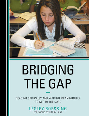 Bridging the Gap PDF