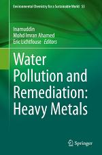 Water Pollution and Remediation: Heavy Metals