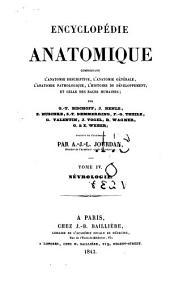 Traité de névrologie
