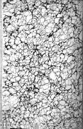 Masekhet ḥulin (Traktat Chullin) Über das Schlachten der Thiere mit dem Commentare Raschis und dessen Beigaben etc.)