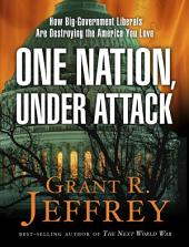 One Nation, Under Attack: How Big-Government Liberals Are Destroying the America You Love