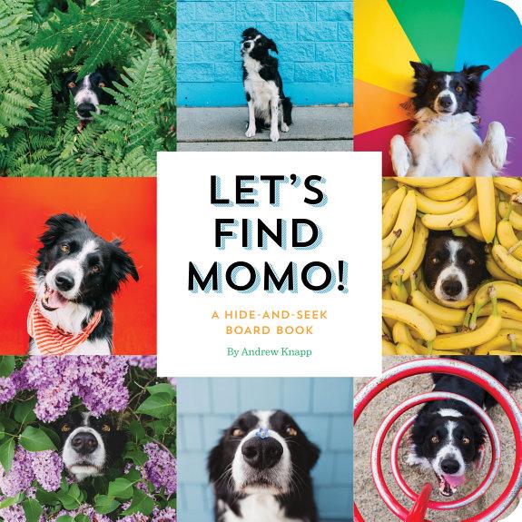 Lets Find Momo