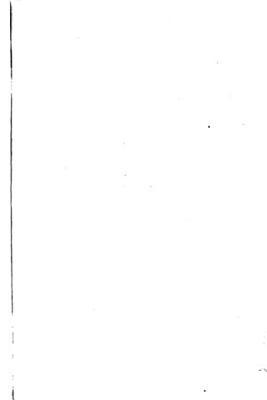 The Medical Brief PDF