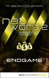 netwars 2 - Totzeit 6: Endgame: Thriller