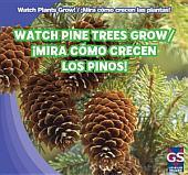 Watch Pine Trees Grow / ¡Mira Cómo Crecen Los Pinos!