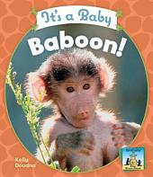 It's a Baby Baboon!