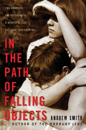 In the Path of Falling Objects PDF