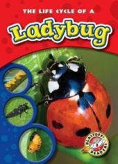 Life Cycle of a Ladybug, The