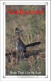 Roadrunners: Birds that Like to Run: A 15-Minute Book