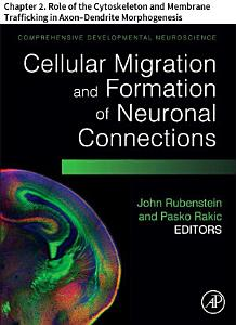 Comprehensive Developmental Neuroscience  Cellular Migration and Formation of Neuronal Connections