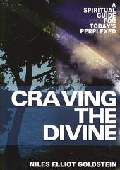 Craving the Divine: A Spiritual Guide for Today's Perplexed