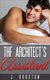 The Architect's Assistant: Volume 1
