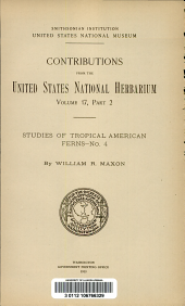 Studies of tropical American ferns. No. 4. By William R. Maxon: Volume 17, Issue 2
