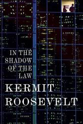 In The Shadow Of The Law Book PDF