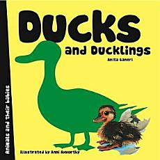 Ducks and Ducklings PDF