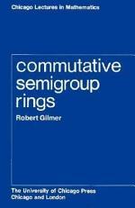 Commutative Semigroup Rings
