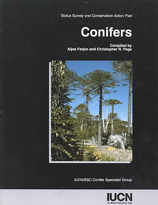 Conifers PDF