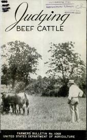 Judging Beef Cattle