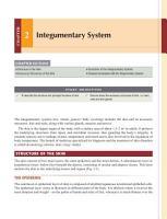 Anatomy  Physiology and Health Education PDF