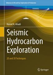 Seismic Hydrocarbon Exploration: 2D and 3D Techniques