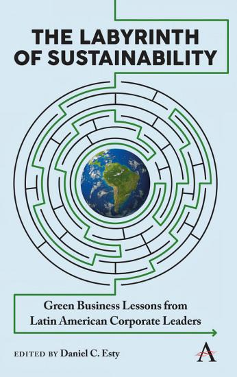 The Labyrinth of Sustainability PDF