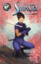 Shinobi Ninja Princess #3: Volume 3