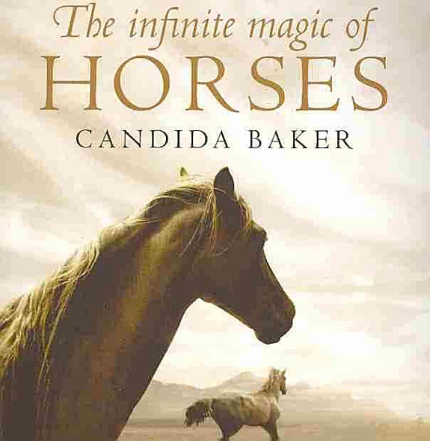 The Infinite Magic of Horses