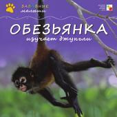 Обезьянка изучает джунгли: [для детей]