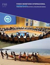International Monetary Fund Annual Report 2012: Working Together To Support Global Recovery