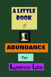 A Little Book of Abundance Tips