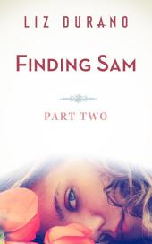 Finding Sam - Part Two