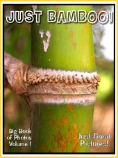 Just Bamboo! vol. 1: Big Book of Photographs & Bamboo Plant Pictures