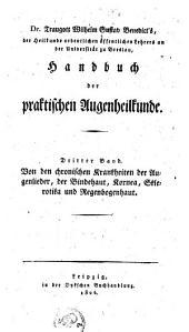 Handbuch der praktischen Augenheilkunde: Band 3