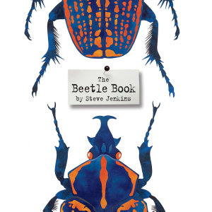 The Beetle Book PDF