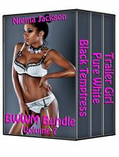 BWWM Bundle - Volume 7 (Taboo Interracial Romance BWWM)
