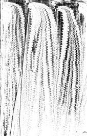 Flauij Josephi, des Hochberühmten Jüdischen Geschichtschreibers, Historien vnd Bücher: Von alten Jüdischen Geschichten, zwentzig, sambt eynem von seinem Leben ... : Alles auß dem Griechischen Exemplar ... von newem verteutscht vnnd zugerichtet, darzu mit ... schönen Figuren ... gezieret
