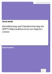 Identifizierung und Charakterisierung des HSP70 Makronukleus-Gens aus Euplotes crassus
