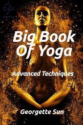 Big Book Of Yoga