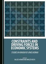 Constraints and Driving Forces in Economic Systems