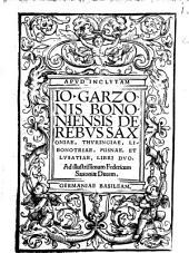 De Rebus Saxoniae, Thuringiae, Libonotriae, Misnae, Et Lusatiae