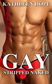 Gay Romance: Stripped Naked