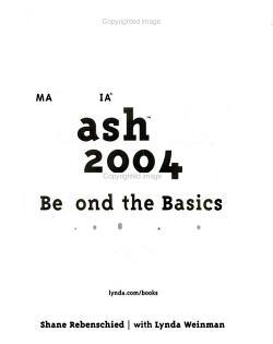 Macromedia Flash MX 2004 Beyond the Basics PDF