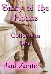 Sissy of the House: Collection One