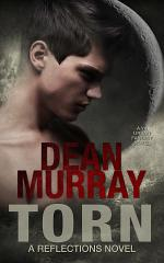 Torn: A YA Urban Fantasy Novel (Volume 2 of the Reflections Books)