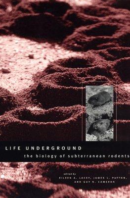 Life Underground PDF