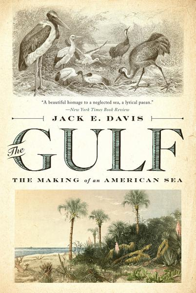 Download The Gulf  The Making of An American Sea Book
