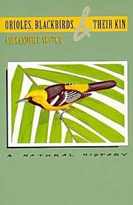 Orioles  Blackbirds  and Their Kin Book