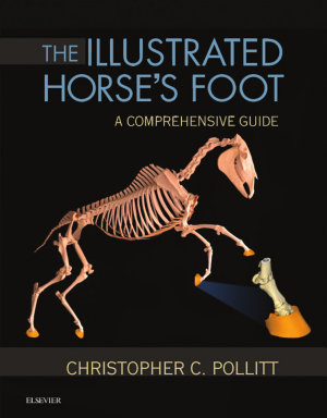 The Illustrated Horse s Foot