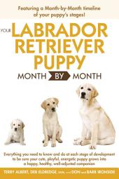 Your Labrador Retriever Puppy Month By Month: Everything You Need to Know at Each Stage of Development